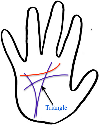 Triangle formed with Intuition Line, Head Line & Luck Line